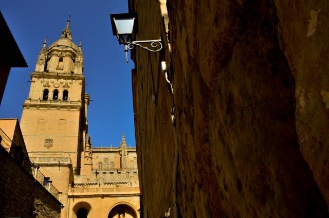 que-ver-en-salamanca-conchas-catedrales